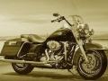 Découvrir Harley Davidson...