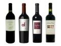 La viticulture en Argentine...