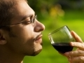 Dégustation de grands vins toscans avec Guido Gualandi...