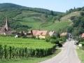 La route des vins d'Alsace...