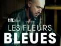 Les fleurs bleues...