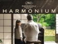 Harmonium...