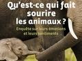 Qu'est-ce qui fait sourire les animaux ?...