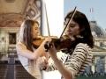 Autour du violon...