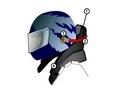 Sports mécaniques : le système Hans...
