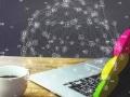 L'information, particule élémentaire du management ?...