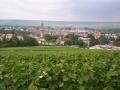 Epernay, une histoire vinicole...