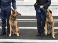 La sécurité privée en France...